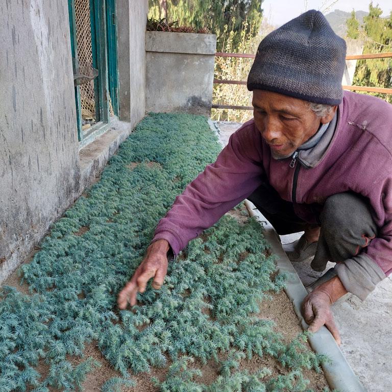 nepal-hero